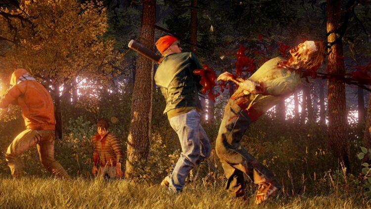 facebook-Linked_Image___State of Decay
