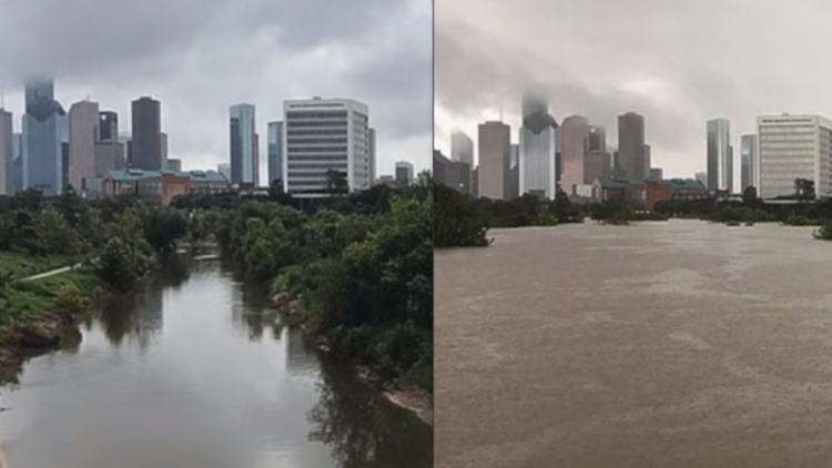 Houston Before and After