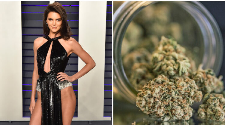 Kendall Jenner Weed