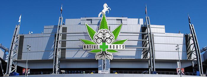 native-roots-MAIN.jpg