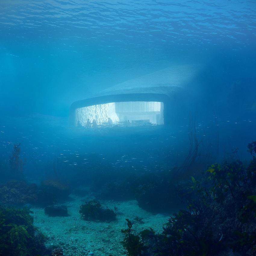 Underwater view of Under