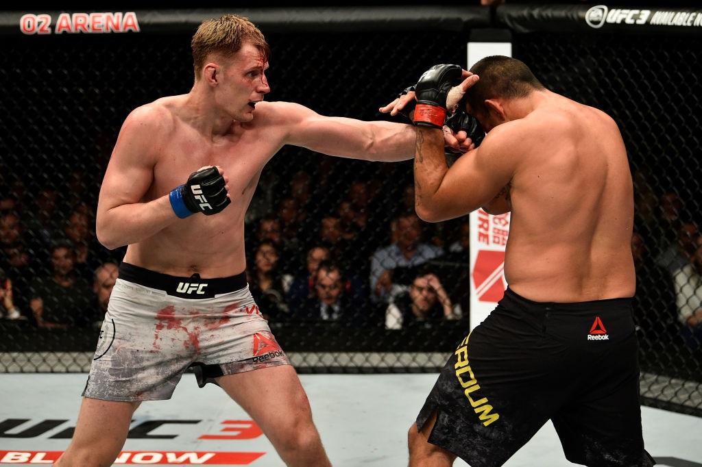 Volkov vs. Werdum UFC London